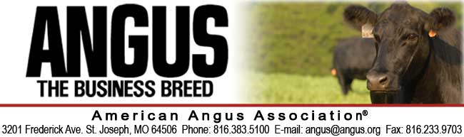 AAA-American Angus Association header