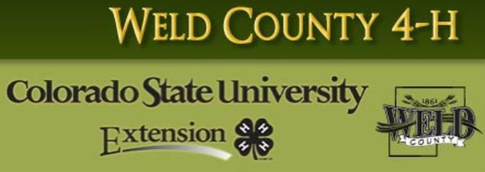 Weld County 4H logo