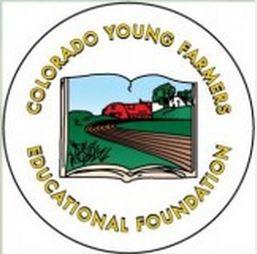 CYFEA logo