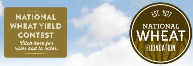 National Wheat Yeld Contest logo