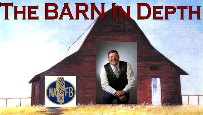 BID - BARN In Depth logo 2